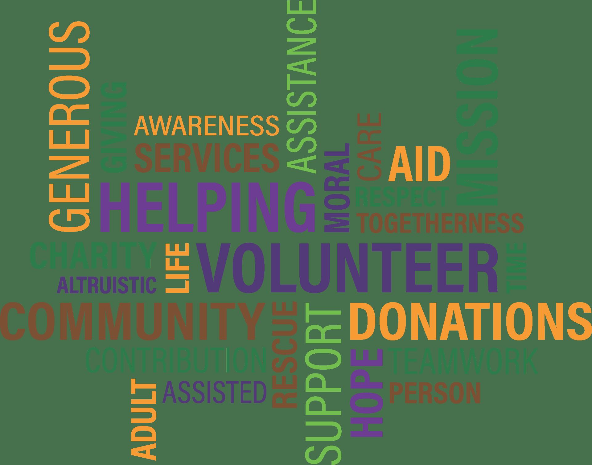المنظمات غير الربحية