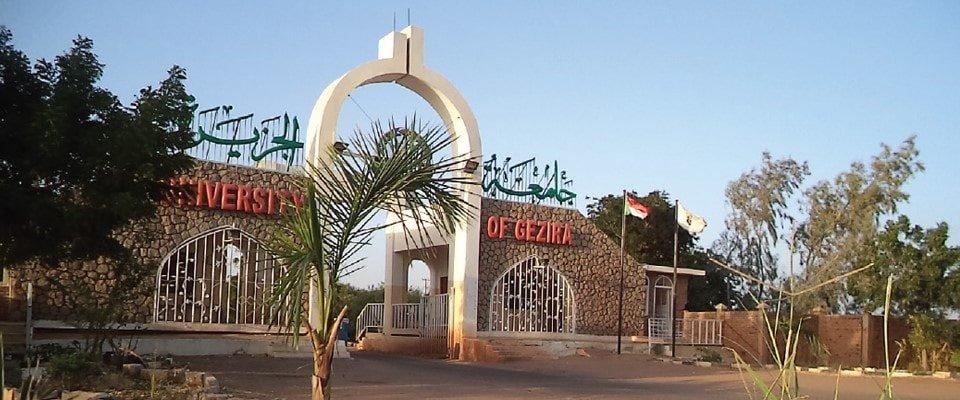 إستخدام برنامج ريماركجامعة الجزيرة في السودان