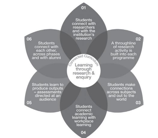 تطوير التعليم العالي - مشكلات التعليم الجامعي